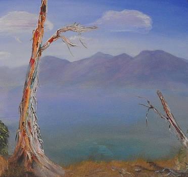 Richard Benson - Mountain View