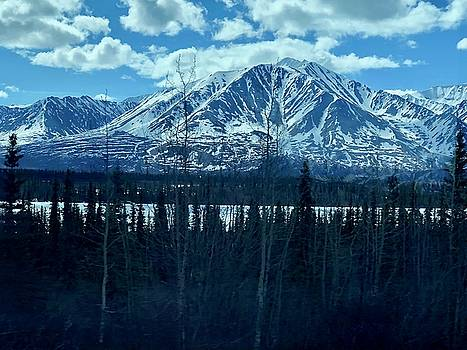 Mountain View by Tony Mathews