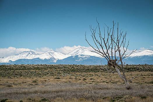 Mary Lee Dereske - Mountain Views