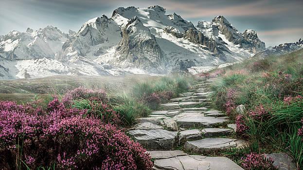 Mountain by Vincent Marguerit