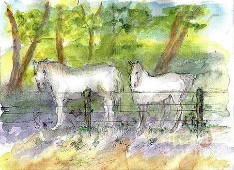Mountain White Horses by Doris Blessington