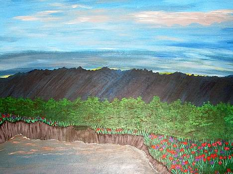 Mountain Wild Flowers by Shannon Barnes