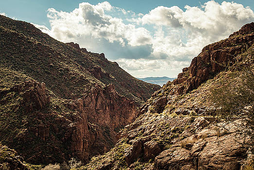 Rosemary Woods-Desert Rose Images - Mountains of Superior, AZ-IMG_8180-2016