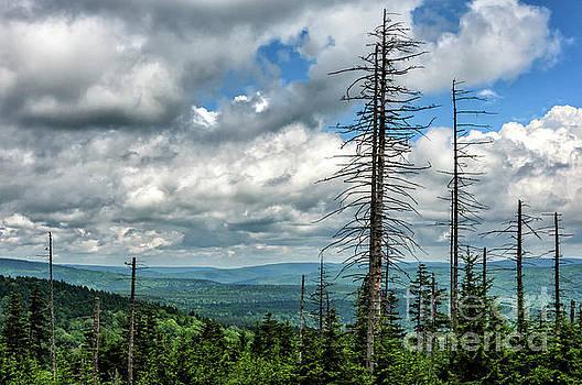 Mountaintop View  by Thomas R Fletcher