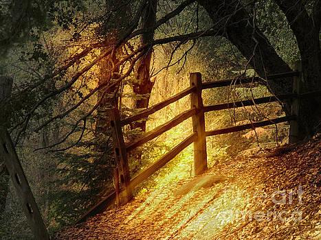 Mountian Trail by Robert Ball
