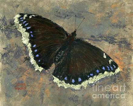 Mourning Cloak, Your Name is a Poem, Your Abilities a Miracle by Jymme Golden