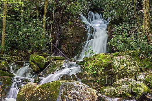 Mouse Creek Falls by Patrick Shupert