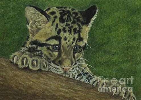 Mowgli by Jennifer Watson