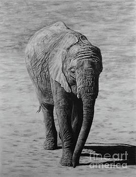 Mpumi by Jennifer Watson