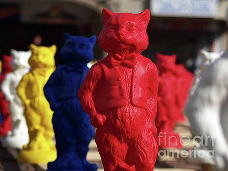 JORG BECKER - MR CAT