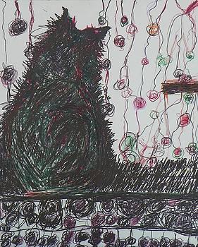 Mr. Cat by Judith Redman
