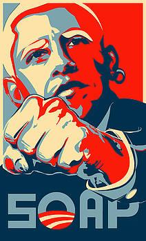 Mr Obama Mr Obama by Daniel Lyons