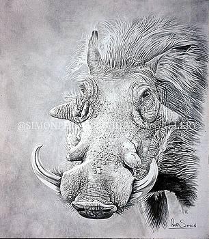 Mr Pig  by Simon Phiri