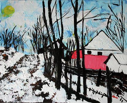 Mrkovici Village 201830 by Alyse Radenovic
