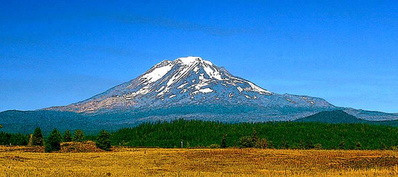 Mt Adams 2 by Larry Darnell
