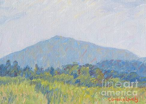 Mt. Ascutney by Candace Lovely