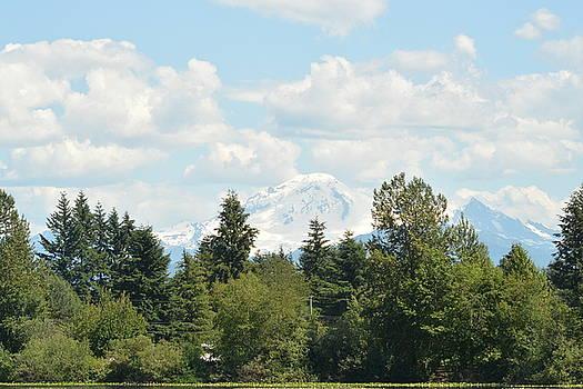 Mt Baker Clouds Shadowed  by Nicki Bennett