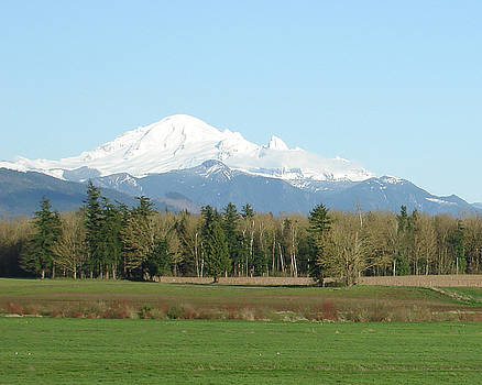 James E Weaver - Mt Baker in View