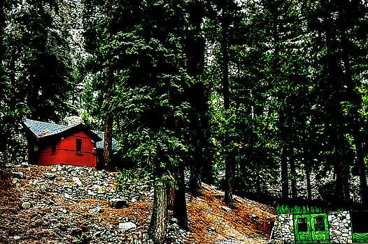 Mt. Baldy Cabin by Joseph Hollingsworth