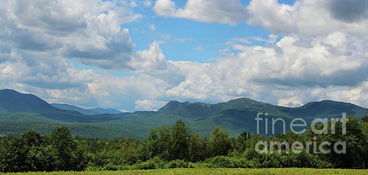 Sandra Huston - Mt. Blue Mountain Range