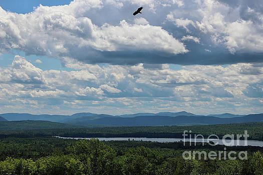 Sandra Huston - Mt. Blue Overlook, Maine