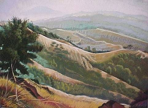 Mt Diablo View by Bobbi Baltzer-Jacobo
