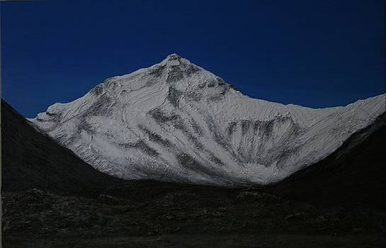 Mt Everest by Donna Steel