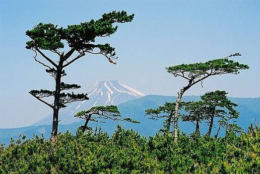 Mt. Fuji ... by Juergen Weiss