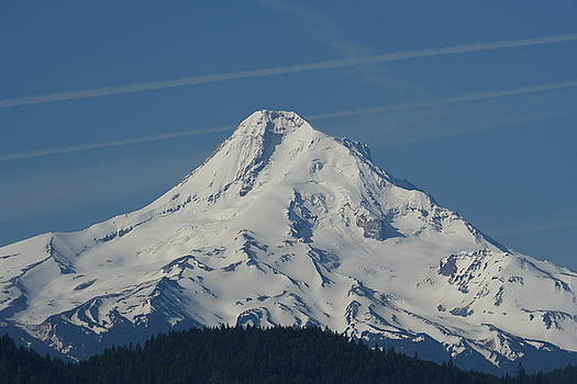 Mt. Hood M2006 by Mary Gaines