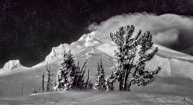 Wes and Dotty Weber - Mt Hood Starry Night
