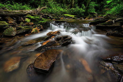 Mt. Mitchell State Park - Cascade  by Jason Penland