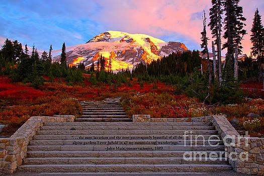 Adam Jewell - Mt Rainier Morning Glow