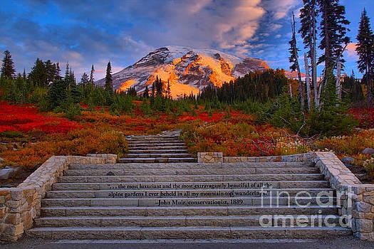 Adam Jewell - Mt. Rainier Morning Sunkiss