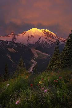 Mt. Rainier Sunrise by Tod Colbert
