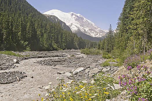 Mt Rainier White River by Peter J Sucy