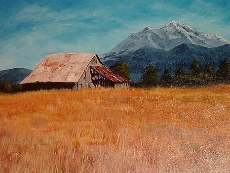 Mt. Shasta Cabin by Sasha Kuzmanovic