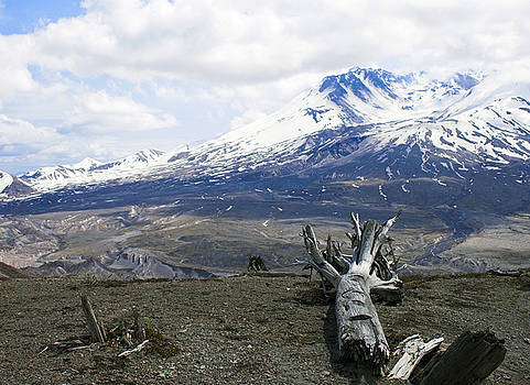 Mt St Helens by Digartz - Thom Williams