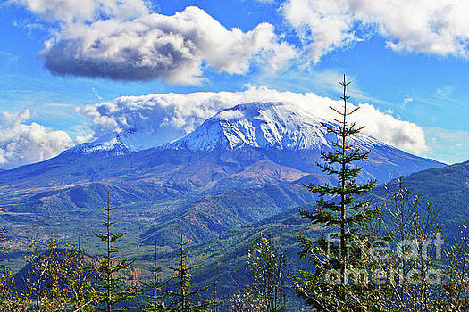 MT. St. Helens Fall by Ansel Price