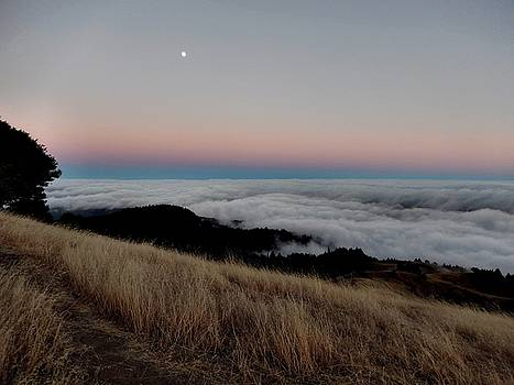 Mt. Tam Moonrise by David Powell