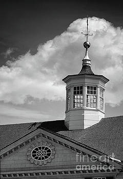 Mt Vernon Cupola Black and White by Karen Adams