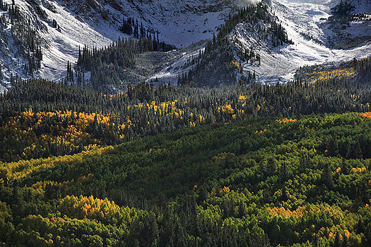 Mt Whetstone Early Fall Colors by Michael Grasseschi