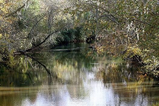 Muckalee Creek by Jerry Battle