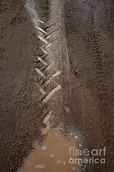 Stephen Mitchell - Mud Escape