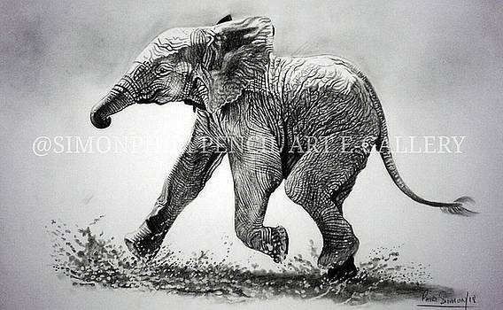 Mud run by Simon Phiri