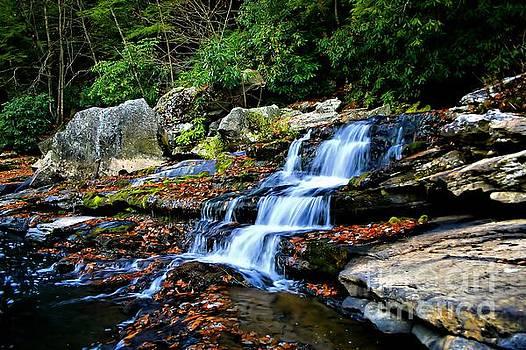 Matthew Winn - Muddy Creek Falls Tailwaters