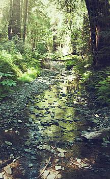 Muir Stream by THiRDiPHOTO