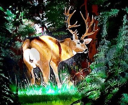 Mule Deer in Sunlight by Wayne Ligon