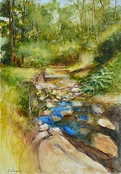 Mullum Mullum Creek Rocks by Dai Wynn