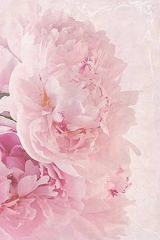 Sandra Foster - Artsy Pink Peonies