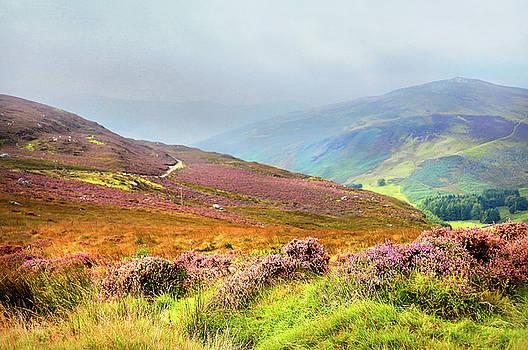 Jenny Rainbow - Multicolored Hills. Wicklow. Ireland